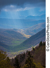 Early Spring Growth in the Oconaluftee Valley of North...