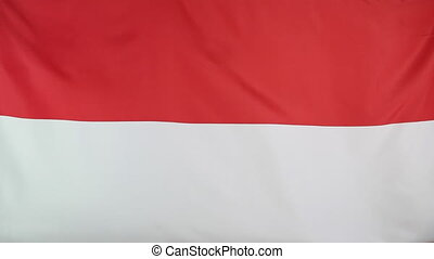 National flag of Indonesia moving in the wind