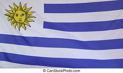 Fabric flag of Uruguay, slow motion in the wind