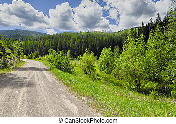 Scenic Byway in Montana, with lush green forests