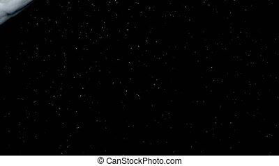 Background of natural floating particles backlit.UHD