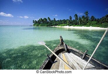 ASIA INDIAN OCEAN MALDIVES SEASCAPE BEACH - a beach with the...