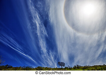 Spring landscape with sun halo and blue sky