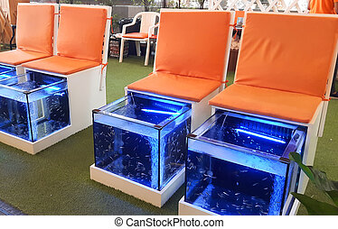 Doctor fish, fish treatment, fish spa, full HD