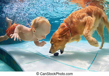 Little child swim underwater and play with dog - Funny...