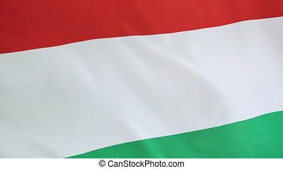 Closeup of national flag of Hungary - Closeup of fabric...