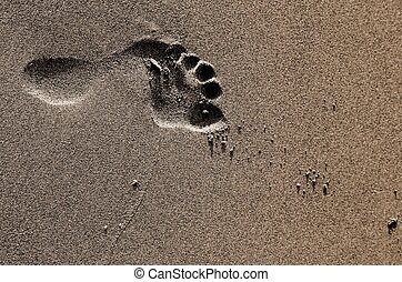 imprint of the bare foot of a child on the beach - footprint...