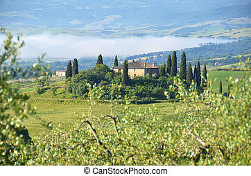 Typical Tuscan landscape Italy