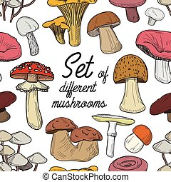 Set of different mushrooms pattern - Pattern of different...