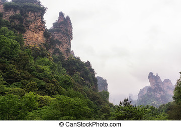 tall mountain peaks of yangjiajie - yangjiajie scenic area...