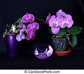 Amethyst crystal and purple orchids