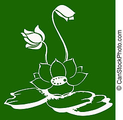 lily on the water - drawing on the water lilies on a green...