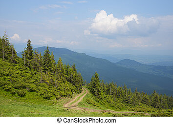 Carpathians mountains - The road through the wood,...