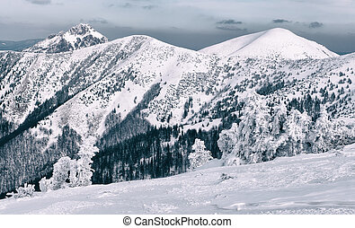 Winter in Mala Fatra mountains, Slovakia - Winter in Mala...