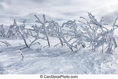 Hard winter in mountains, Slovakia