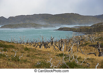 Torres del Paine National Park - Windswept blue waters of...