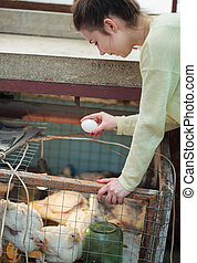 Farmer woman holding chicken egg in henhouse - Young farmer...