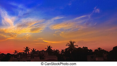 Colorful Sunset country side  silhouette of coconut trees at the horizon.