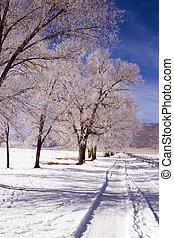 OWENS, vale, Califórnia, janeiro, 2007