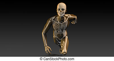 Radiography Scan with Bones as a Science Concept