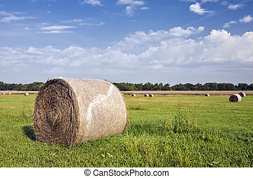 Hay Bales Shrink-Wrapped