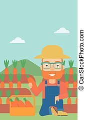 Farmer collecting carrots - A hipster man with the beard...