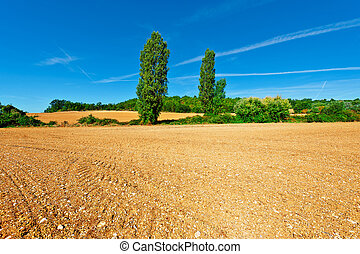 Plowed Fields - Plowed Sloping Fields of France in the...