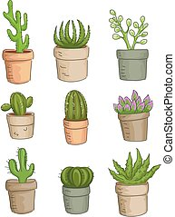 Succulent Plants - Illustration Featuring a Variety of...