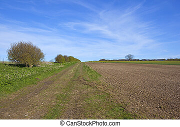 springtime on the yorkshire wolds - cultivated fields and...