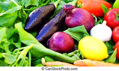 different vegetables and citrus fruits - moving different...