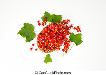 Fresh picked red currants in wicker bowl