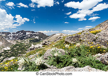 Wilderness Landscape in Colorado Rocky Mountains