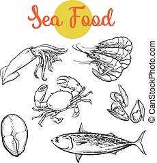 Isolated set of fresh marine products - Set of marine...