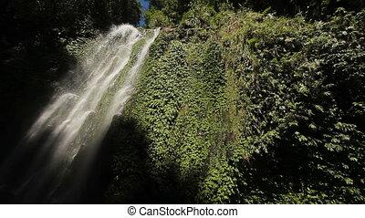 Beautiful tropical waterfall. - Waterfall in the...