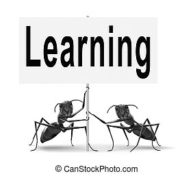 online learning and education - learn and study and find...