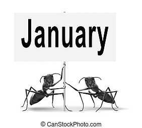 January the first month of the next year in winter season...