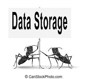 Daten, lagerung