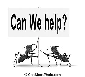how can we help you - can we help you and give you advice or...
