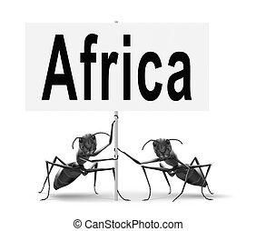 Africa travel destination - Africa continent tourism...