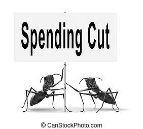 gastando, cortes