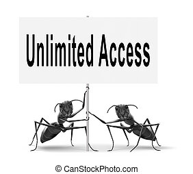 Unlimited Access - Unlimited access all areas no...
