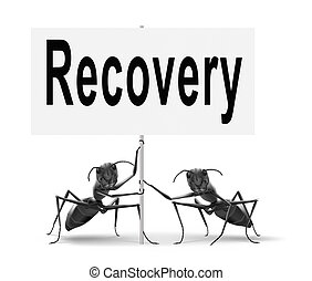 recovery - Recovery recover lost data economy recovering