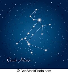 Canis Maior constellation at starry night sky