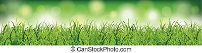 Grass Green Bokeh Lights Background Header SH - Green grass...