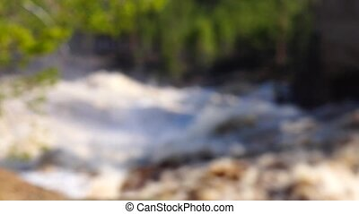 Waterfall in wild pine forest - Sunny waterfall in pine...