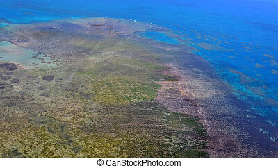 Aerial view of arlington coral reef at the Great Barrier Reef Queensland Australia