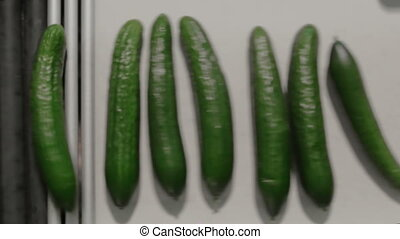 Cucumbers Are Spinning On Production Line. Food Production