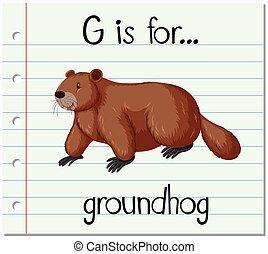 Flashcard letter G is for groundhog illustration