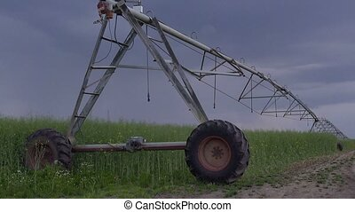 Irrigation in oilseed rape field - Sprinkler irrigation...