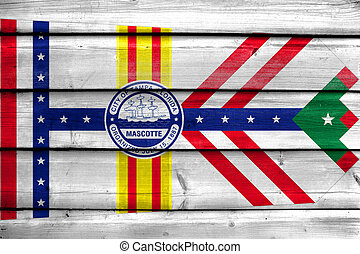 Flag of Tampa, Florida, painted on old wood plank background
